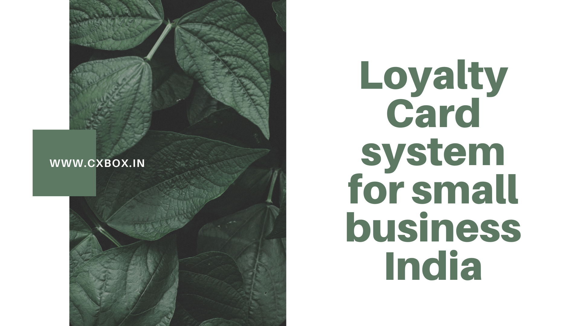 Loyalty Card system for small business India